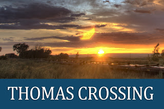 Last Chance to Build Your Story in Thomas Crossing